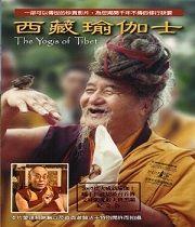 Jogíni Tibetu