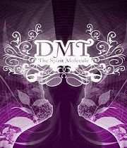 DMT: Duchovní molekula