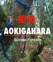 Aokigahara: Les sebevrahů